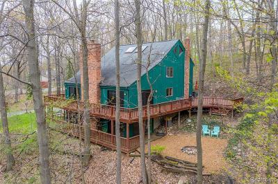Brandon Twp Single Family Home For Sale: 2995 S Ortonville Road