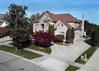 Rochester Hills Single Family Home For Sale: 3566 Heron Ridge Drive