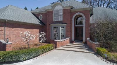 Novi Single Family Home For Sale: 20760 Turnberry Boulevard