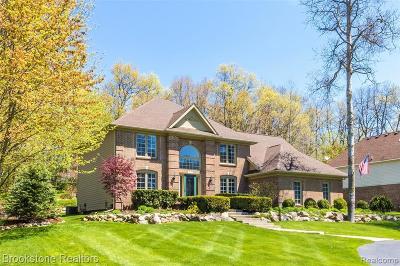 Single Family Home For Sale: 10120 Creekwood Trail
