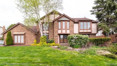 Farmington, Farmington Hills Single Family Home For Sale: 37300 Tina Drive