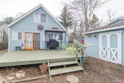 White Lake, White Lake Twp Single Family Home For Sale: 9590 Roundlake Boulevard