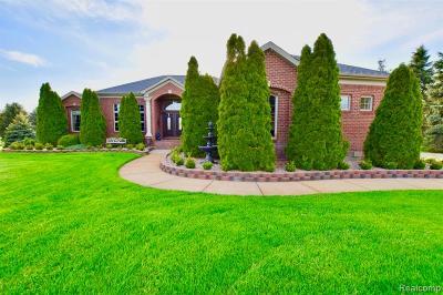 Bruce Twp Single Family Home For Sale: 72957 Solanus Drive