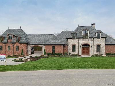 Salem Twp MI Single Family Home For Sale: $1,750,000