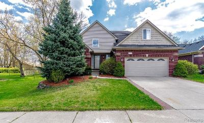 Livonia Single Family Home For Sale: 37467 Eagle Drive