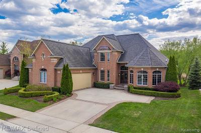 Clinton Twp Single Family Home For Sale: 20007 Blackfoot Drive