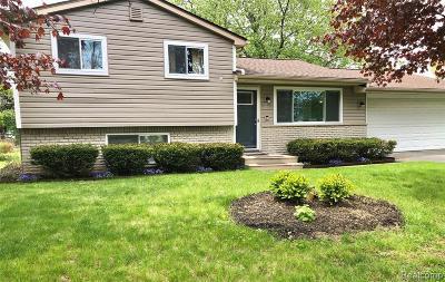 White Lake, White Lake Twp Single Family Home For Sale: 391 Teggerdine Trail