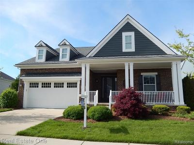 Canton Single Family Home For Sale: 49672 Shire Ln