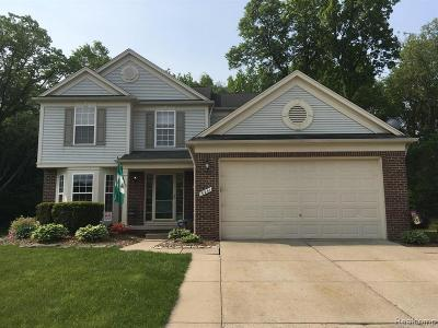 Lake Orion, Orion Twp, Orion Single Family Home For Sale: 3241 Yosemite Drive