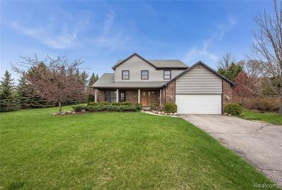 Milford Single Family Home For Sale: 803 Manderly Drive