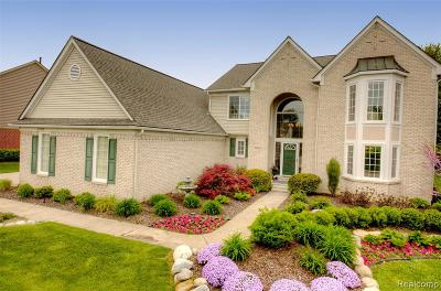 Canton Single Family Home For Sale: 47832 Royal Pointe Drive
