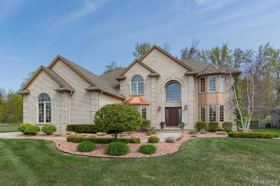 Washington Twp Single Family Home For Sale: 61321 Burningwood Drive