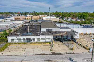 Commercial For Sale: 20530 Hoover Street