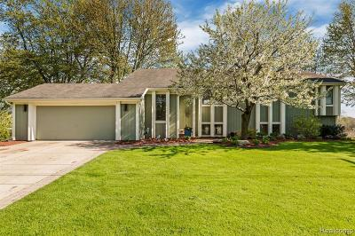 Lake Orion, Orion Twp, Orion Single Family Home For Sale: 2815 Candlewick Drive