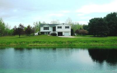 Single Family Home For Sale: 1689 N Branch Road