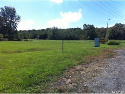 Taylor Residential Lots & Land For Sale: Beech Daly