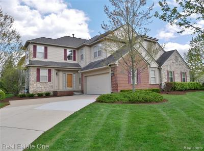 Rochester Hills Condo/Townhouse For Sale: 3793 Winding Brook Circle