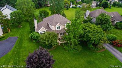 Single Family Home For Sale: 4976 Stillmeadow Drive
