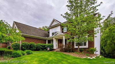 White Lake Single Family Home For Sale: 8937 El Dorado Drive