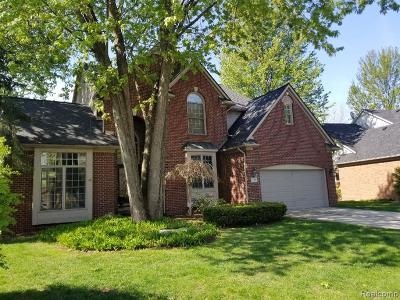 Troy Single Family Home For Sale: 766 Island Court