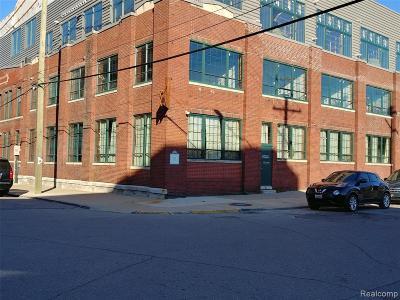 Detroit Condo/Townhouse For Sale: 2987 Franklin Street #3E