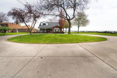 Harrison Twp MI Single Family Home For Sale: $729,900