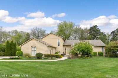 Rochester Hills Single Family Home For Sale: 1050 Royal Doulton Boulevard