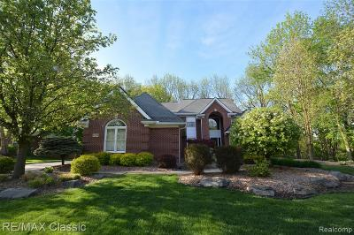 Novi Single Family Home For Sale: 47620 Wellesley Court