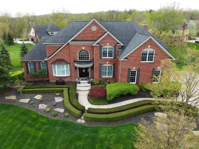 Northville Single Family Home For Sale: 50529 Eagles Nest