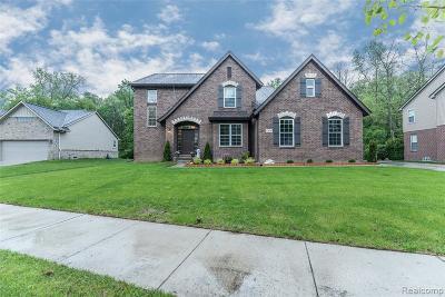 Belleville, Belleville-vanbure, Bellleville, Van Buren, Van Buren Twp, Van Buren Twp., Vanburen Single Family Home For Sale: 13649 Cobblestone Creek Drive