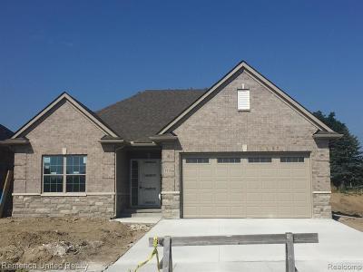 Livonia Single Family Home For Sale: 37216 Elia Street