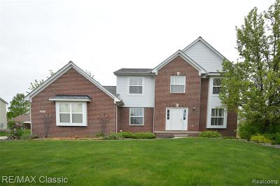 Novi Single Family Home For Sale: 24347 Homestead Court