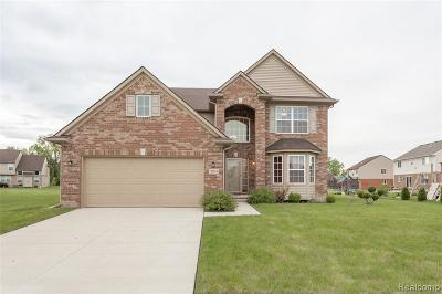 Allen Park, Lincoln Park, Southgate, Wyandotte, Taylor, Riverview, Brownstown Twp, Trenton, Woodhaven, Rockwood, Flat Rock, Grosse Ile Twp, Dearborn, Gibraltar Single Family Home For Sale: 11848 Lakepointe Drive