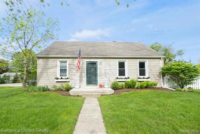 Salem, Salem Twp, Plymouth, Plymouth Twp Single Family Home For Sale: 9411 Brookline Ave