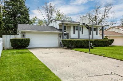 Auburn Hills Single Family Home For Sale: 2236 Old Salem Road