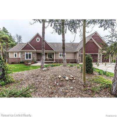 Milford Twp MI Single Family Home For Sale: $425,000