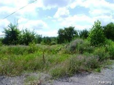 Highland Twp Residential Lots & Land For Sale: 1322 Newberry