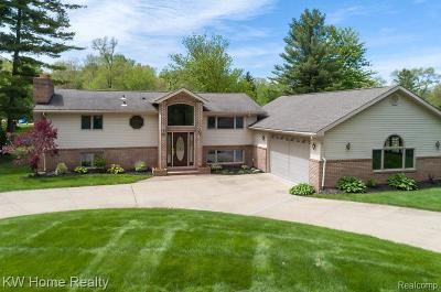 Farmington Hills Single Family Home For Sale: 29632 Pond Ridge Road