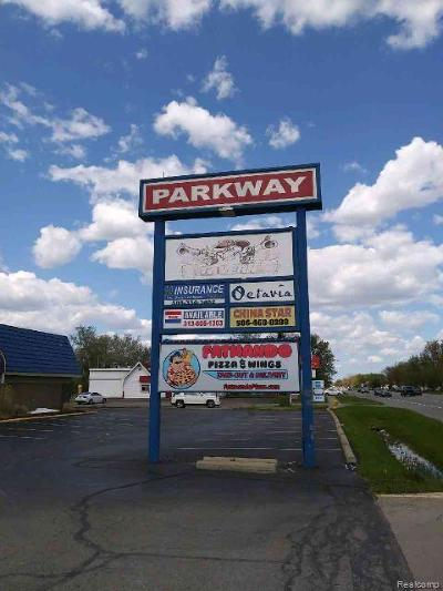 Commercial For Sale: 37235-37245 S Groesbeck Highway