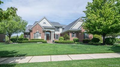 Northville Single Family Home For Sale: 48232 Four Seasons Boulevard