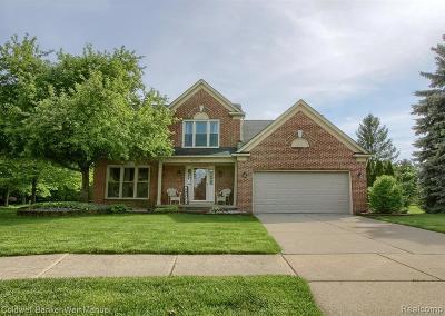 Canton Single Family Home For Sale: 45399 Remington Court