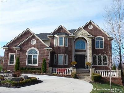 Northville Single Family Home For Sale: 54040 Boardwalk Avenue