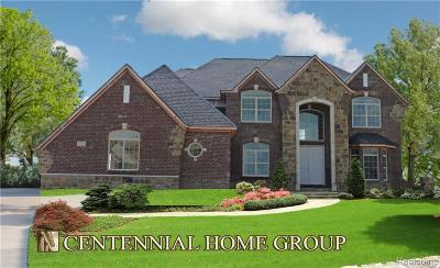 Northville Single Family Home For Sale: 50370 Boardwalk Avenue
