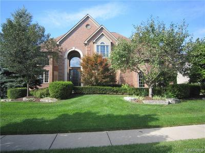 Northville Twp MI Single Family Home For Sale: $699,000