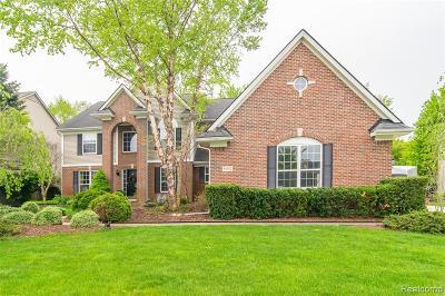 White Lake Single Family Home For Sale: 8937 Haymarket Street