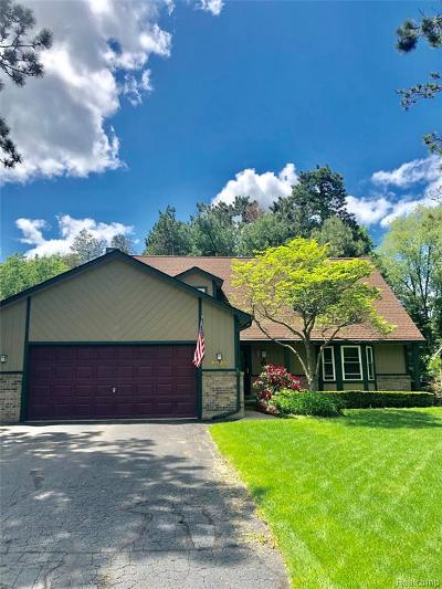 Commerce Twp Single Family Home For Sale: 4349 Arbour Drive