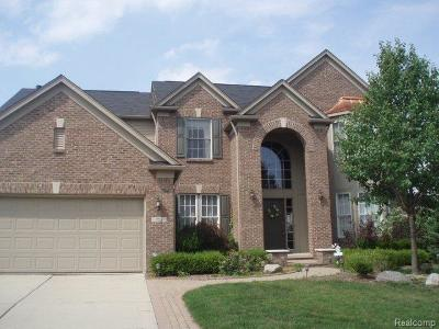 Rochester Hills Single Family Home For Sale: 753 Bliss