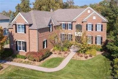 Novi Single Family Home For Sale: 25876 Shoreline Drive