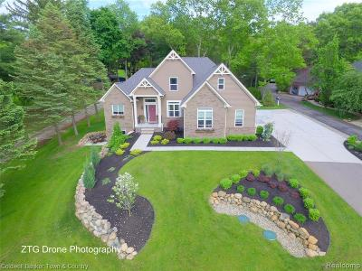 Milford Twp Single Family Home For Sale: 1883 S Milford Road