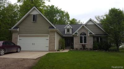 Imlay Twp MI Single Family Home For Sale: $289,900